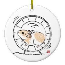 hamster ornaments keepsake ornaments zazzle