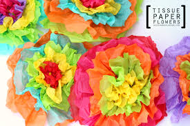 tissue paper flowers tissue paper flowers a girl and a glue gun