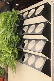 homelife 10 best plants for vertical gardens 270 best vertical gardening images on pinterest landscaping