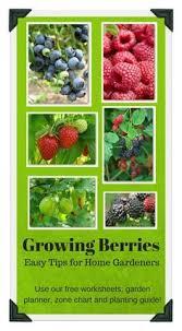 download free vegetable garden worksheets gardening diary zone