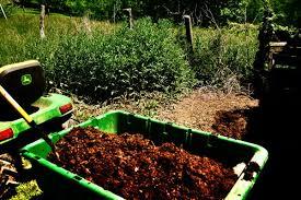 chicken manure benefits for the garden my pet chicken blog