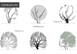 freehand sketch of tree elevation free cad blocks download