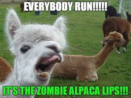 image tagged in alpaca lips imgflip