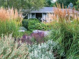 how to design a waterfront garden sunset
