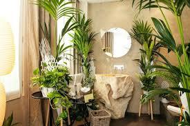 plante verte dans une chambre à coucher les plantes vertes dans la chambre annikapanika