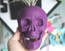 Large Head Planters Skull Planter Etsy