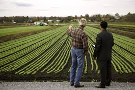 how to start a small farm business how to write a small farm business plan