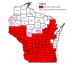Map Of Southern Wisconsin by Oak Wilt Affects Red And White Oaks In Southern Wisconsin