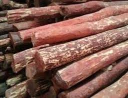 what is sandalwood and where can it be found in india quora