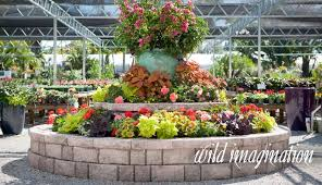 Rock Garden Florida Retail Nursery Rock City Gardens Vero Fl