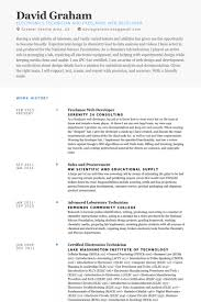 Example Format Of Resume by Freelance Web Developer Resume Samples Visualcv Resume Samples