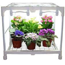 indoor plants singapore awesome office grow lights for indoor plants advice for your home