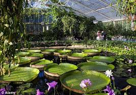 Botanic Gardens Uk Uk Conservative Government To Rob Royal Botanical Gardens