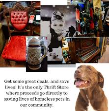 Used Furniture Thrift Stores Near Me Thrift Store The Spca Of Northern Nevada