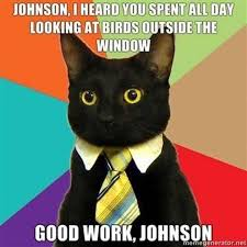 Business Kid Meme - business cat meme list of funny business cats