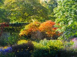 Secret Garden Wall by Secret Garden Through The Door Behind The Wall U2013 Gill Mcgrath
