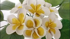 plumeria flowers quilling plumeria flowers