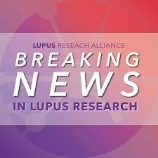 sle memorial programs 95 best lupus news images on autoimmune disease