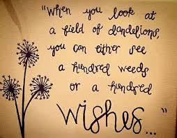 do you see weeds or wishes