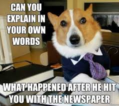 Newspaper Cat Meme - image 287320 lawyer dog know your meme