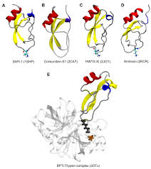 marine drugs free full text protease inhibitors from marine