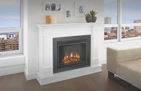 fireplace ventless natural gas fireplace insert home design