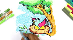 learn to color birds in nest coloring pages videos for children