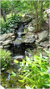 backyards cozy 1000 images about pond plus on pinterest living
