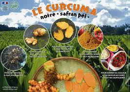 curcuma en cuisine curcuma cuisine française