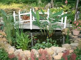 Pond In Backyard by Pond Decorating Pictures U0026 Ideas Hgtv