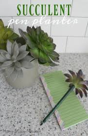 Cute Succulent Planters by 100 Ideas To Try About Stuff I Want To Make Ii Disney Diy