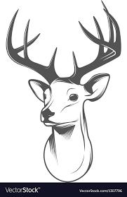deer head deer head isolated on white background royalty free vector