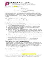 emergency action plan template cyberuse