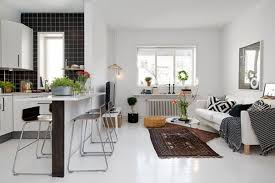 Apartment Plants Modern Apartment Interior Design With Black Accent Walls And