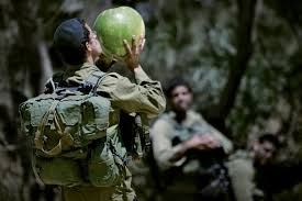 israel s vegan soldiers push for changes in israel defense forces