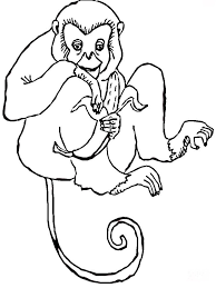 monkey coloring pages download print monkey coloring pages