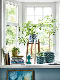 styled window corner nook with fresh plants and blues tour this