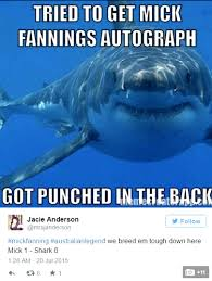 Shark Meme - the 18 best mick fanning shark memes all in one place the inertia