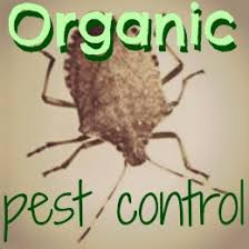 Gardening Pest Control - organic pest control keeping everything from deer and rabbits to