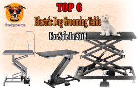 go pet club grooming table electric motor top 6 electric dog grooming table reviews best grooming tables for
