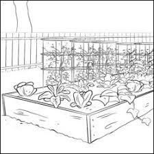 farm coloring pages 1st grade vegetable garden