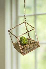 best 25 hanging terrarium ideas on pinterest copper decor