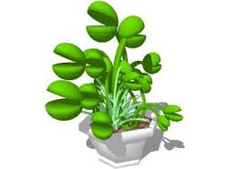 sketchup components 3d warehouse plants carnivore plants