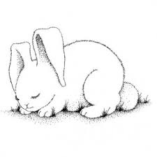 tag baby rabbit coloring pages coloring pages rabbit