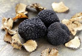 where to buy truffles online buying truffles online house of caviar and foods