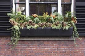 What To Plant In Window Flower Boxes - ideas for urban window box gardens u2013 how to make window boxes for