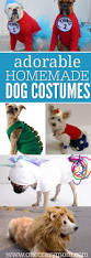 the most popular dog costumes popsugar pets best 20 cute cat costumes ideas on pinterest cat costumes cat