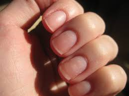 beauty blog by lisa tips from head to toe feeding your nails