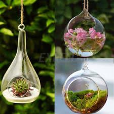 glass terrarium home u0026 garden ebay