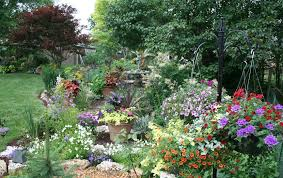 awesome best perennial flowers ideas pictures 14 amazing